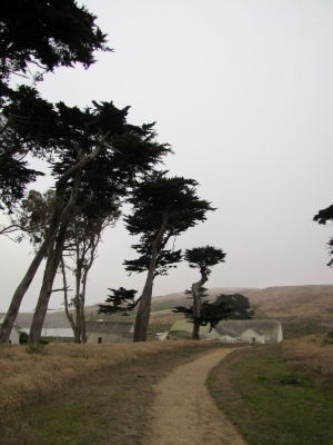Windy Day At. Point Reyes