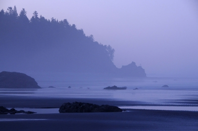 Ruby Beach Fog
