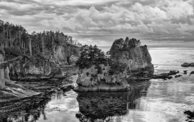 Cape Flattery After The Rain