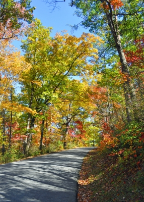 Road To Chimney Rock Park
