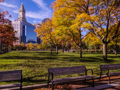 Bean Town Fall Afternoon