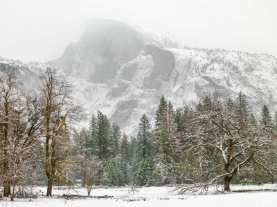 Winter Snow Storm, Yosemite Valley