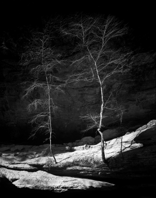 Two Trees, Old Man's Cave