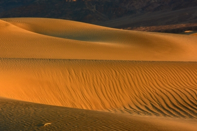Mesquite Flat Dunes At Sunrise