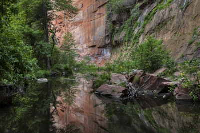 Canyon Tranquility