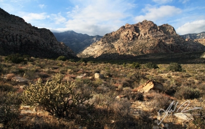 Red Rock Canyon Nca