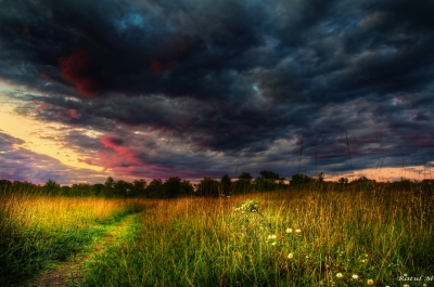 Storm Clouds At The Deep Quarry Lake Forest Preserve