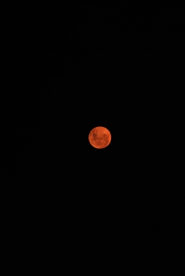 Red Moon. 1/30/10
