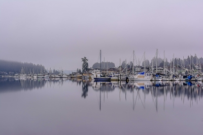 Foggy Harbor With A Splash Of Color