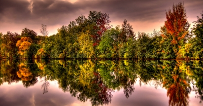 Small Pond Reflection