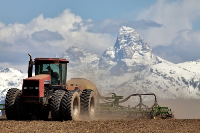 Farming In The Mountains