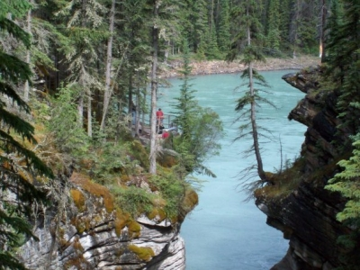 Athabasca River View From Canyon
