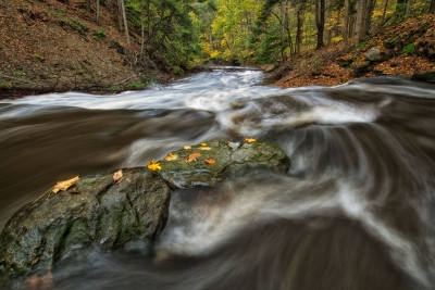 Rushing River – Cuyahoga Valley National Park