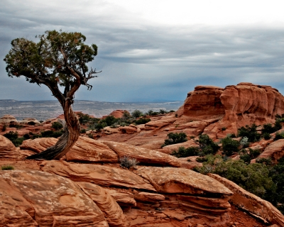 Lone Sentinel Of Broken Arch Trail – Arches National Park