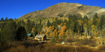 Hope Valley Cabin In Fall