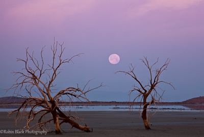 Perigee Moonset, Salton Sea