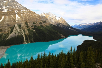 It's A Picture Of Peyto Lake