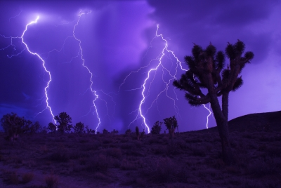 Lightning In The Mojave
