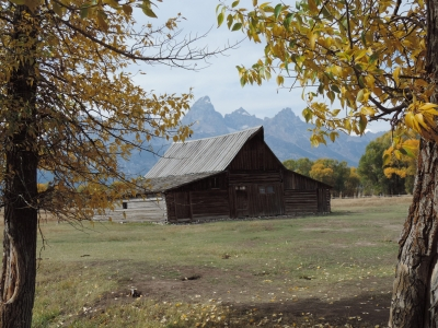 Ta Moulton Mormon Barn Grand Tetons