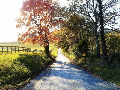 Maryland Country Road