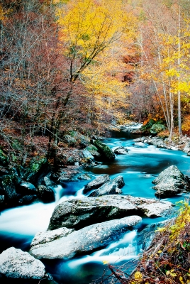 Color Flowing Through The Smokies