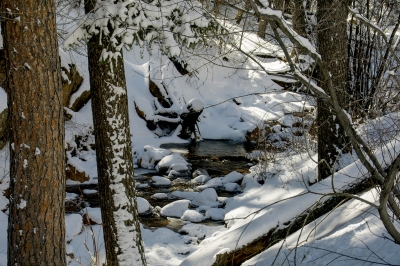 Snowfall On North Cheyenne Creek