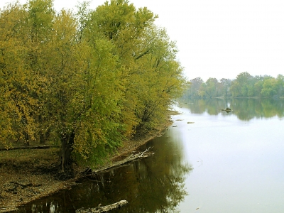 Monocacy River Shore Along C&o Canal In Autumn