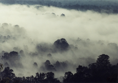 Fog Over Yarramundi, Nsw