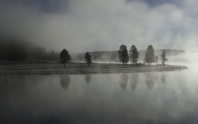 Early Morning In The Hayden Valley