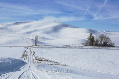 Traveling The Back Roads Of The Palouse