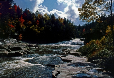 Fall At Swallow Falls