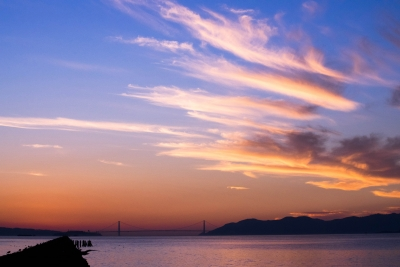 The Beauty Of The Bay