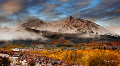 Aspen Fall Morning Mist