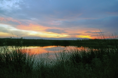 Suisun Marsh Sunrise