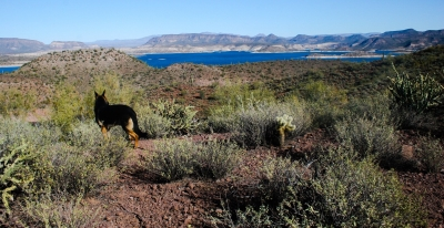 Yavapai Trail, Lake Pleasant