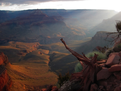 Eerie Sunrise In Grand Canyon