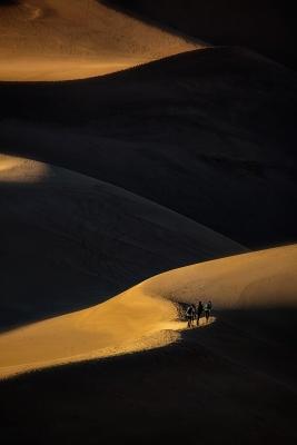 Hikers And Sidelit Dunes