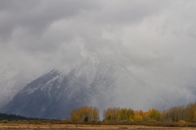 Mt. Moran In The Clouds