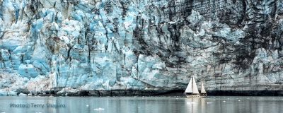 Sailing In Glacier Bay