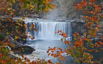Autumn At Cumberland Falls