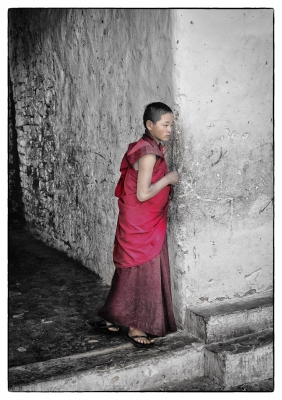 Young Monk In Wangdue Monastery