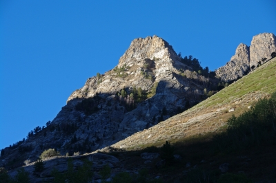 Morning In Lamoille Canyon