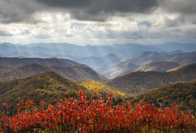 The Light Blue Ridge Parkway Fall Foliage
