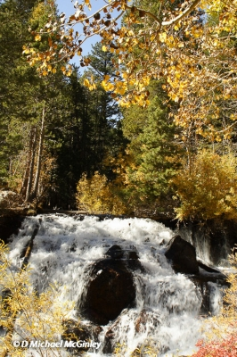 Water Fall In Fall Colors