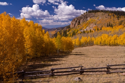 Creede Colors
