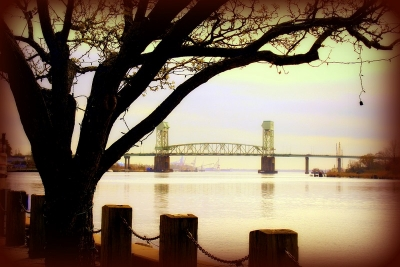 The Beauty Of Wilmington