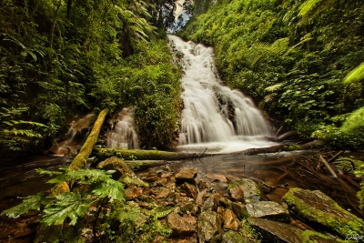 Bwindi Impenetrable Rainforest Upper Falls