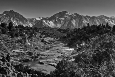 Whitmore Hot Springs (black And White)