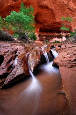 Falls In Coyote Gulch