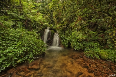 Bwindi Impenetrable Rainforest Waterfall